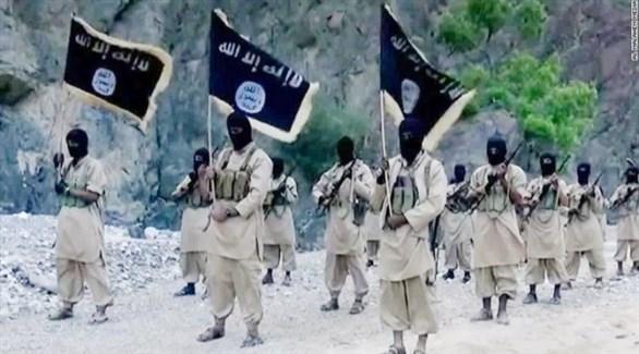 عناصر من التنظيمات الإرهابية (أرشيف)