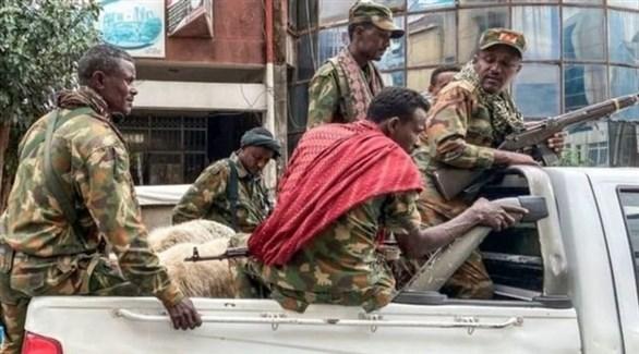 عناصر تقاتل إلى جانب القوات الفيدرالية ضد منطقة تيجراي (أرشيف)
