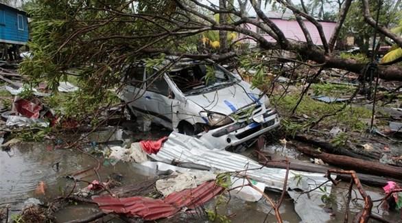 سيارة تحت شجرة أسقطتها العاصفة إيوتا في نيكاراغوا (رويترز)