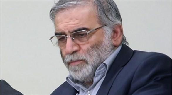 العالم الإيراني فخري زادة (أرشيف)