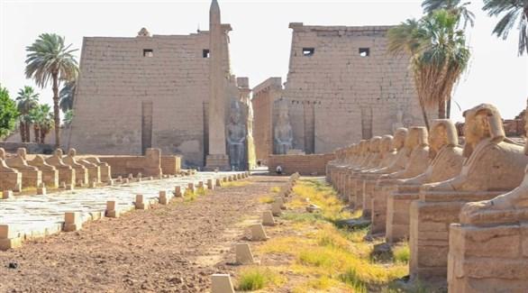تماثيل الكباش في الكرنك بمصر (أرشيف)