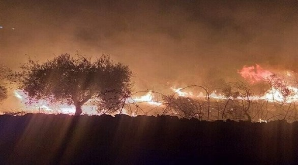 حرائق سوريا (أرشيف)