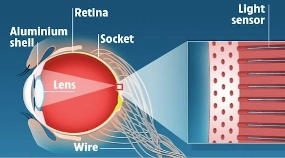 عين إلكترونية تفوق قدرة العين البشرية على الرؤية الليلية (صن)