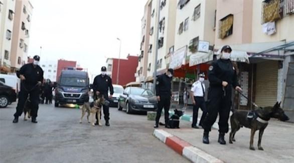 عناصر من الأمن المغربي منتشرون في مكان تفكيك الخلية الإرهابية اليوم (تويتر)