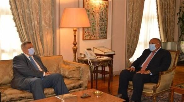 جانب من لقاء  المنسق الخاص للأمم المتحدة في لبنان وزير خارجية مصر  (تويتر)