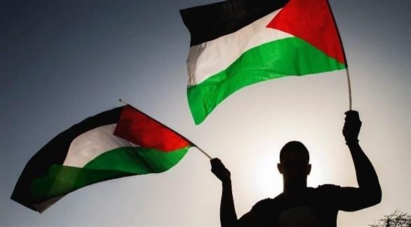 شاب يرفع علم فلسطين (أرشيف)