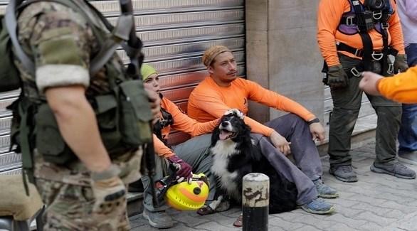 الكلب فلاش مع فريق الإنقاذ التشيلي في بيروت (أ ف ب)