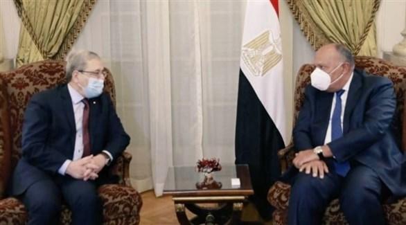 وزير الخارجية المصري سامح شكري ونظيره التونسي عثمان الجرندي (أرشيف)