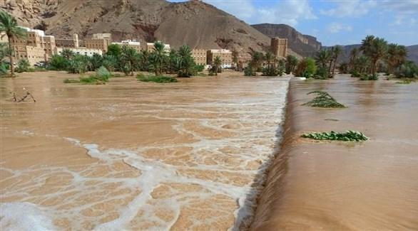 سيول في اليمن (هاني غداف / تويتر)