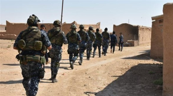 عناصر من الشرطة الاتحادية العراقية خلال حملة الدهم والتفتيش (تويتر)