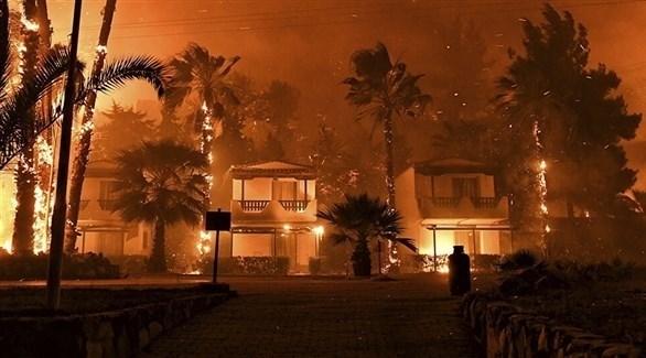 حرائق غابات هائلة في قبرص (أرشيف)