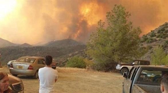 حرائق الغابات في قبرص (أرشيف)