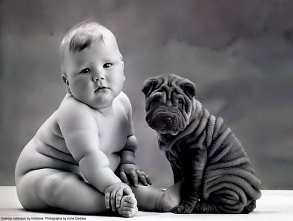 أشخاص يشبهون كلابهم فى 20 صورة طبيعية Dog10