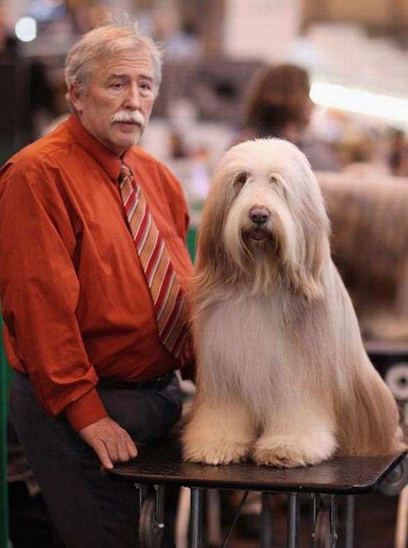 أشخاص يشبهون كلابهم فى 20 صورة طبيعية Dog8