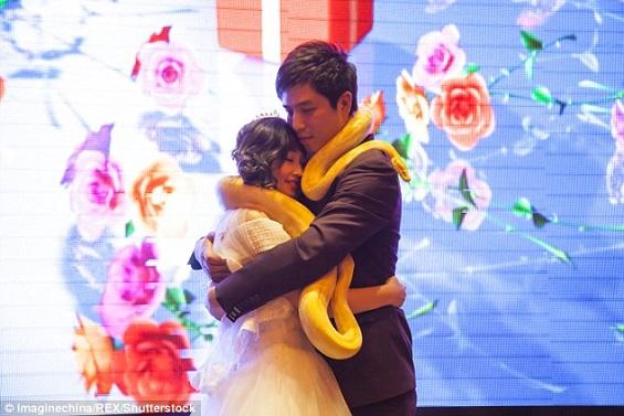 بالفيديو والصور: عروسان يتبادلان الثعابين بدلاً من خاتم الزفاف