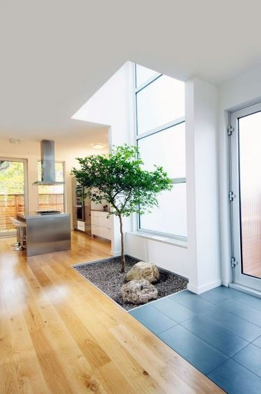 7 أفكار عصرية لديكور المنزل بالنباتات الطبيعية